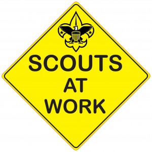 2010 GTFG Scouts at Work jpeg